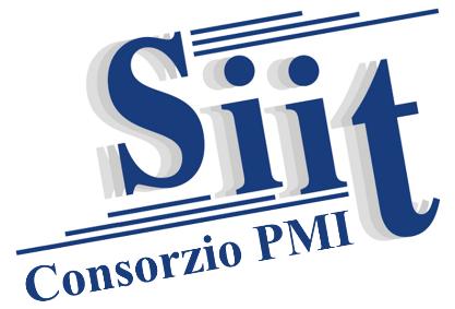 Eletto il nuovo consiglio direttivo del SIIT PMI per il triennio 2020-2023